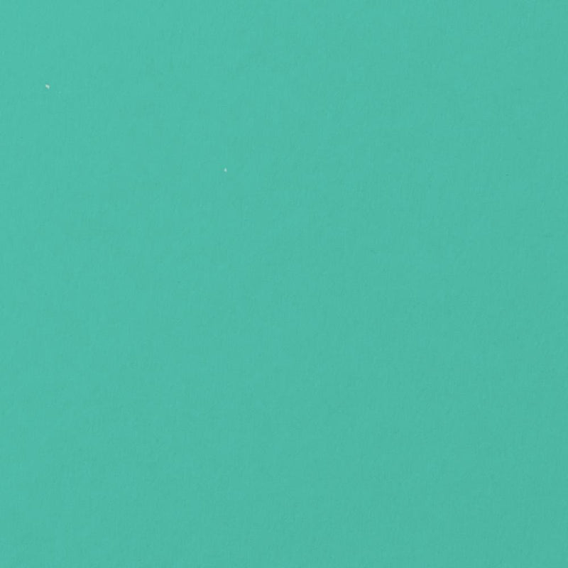 Tiffany Blue Solid Cardstock 100#, A9 Flat Card - Paperandmore.com
