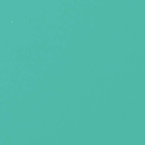 Tiffany Blue Solid Card Stock 100 lb, 5