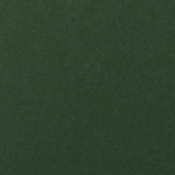 Recycled Timber Green Card Stock 80#, 8 1/2