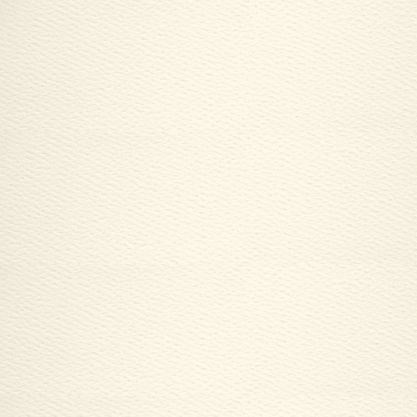 Warm White 110# Felt Cardstock, 5