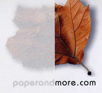 "White Translucent Vellum Card Stock 36 lb, 8 1/2"" x 11"" - Paperandmore.com"