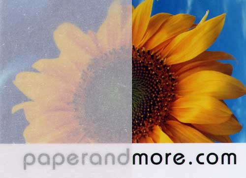 "White Translucent Vellum Card Stock 48 lb, 8 1/2"" x 11"" - Paperandmore.com"