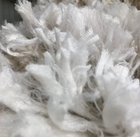 Freshly shorn superfine merino fleece wool.