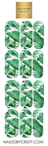 Decals- Tropical Leaves