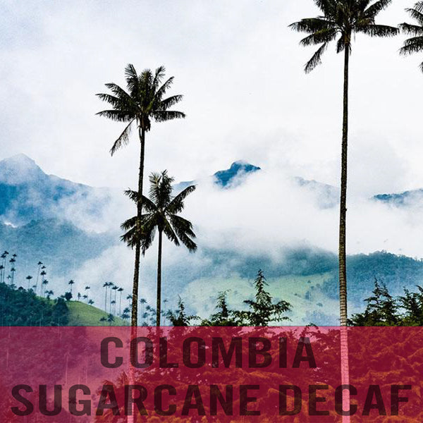 Colombia—Sugarcane Decaf ($5.75/lb) Green Coffee Mill47 Coffee