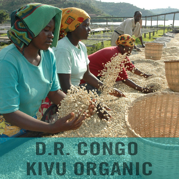 D.R. Congo—Kivu Organic ($5.95/lb) Green Coffee Mill47 Coffee