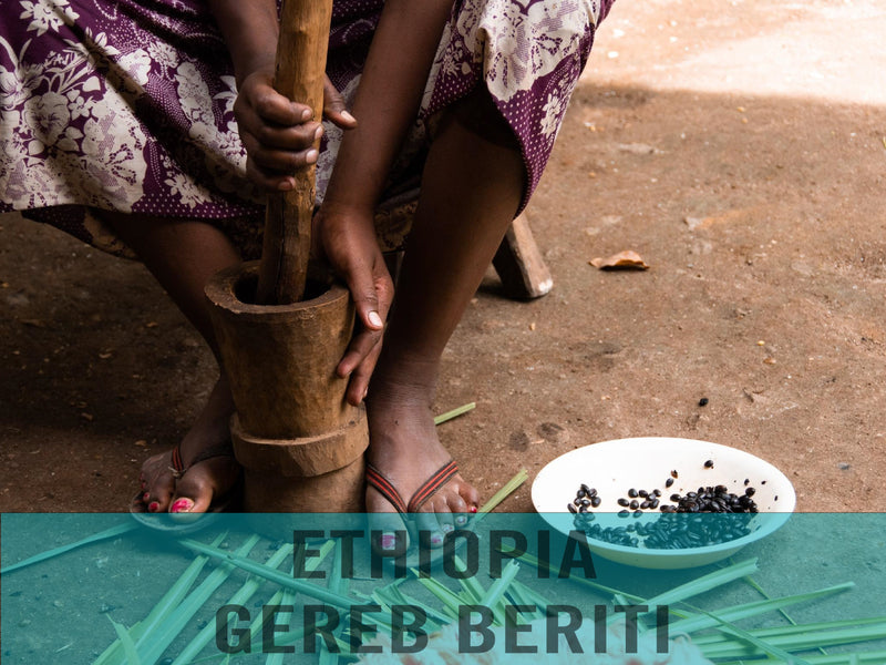 Ethiopia—Yirgacheffe Gedeb Beriti ($4.80/lb) Green Coffee Mill47 Coffee