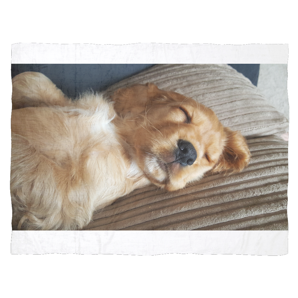 Sleeping Puppy Fleece Blanket