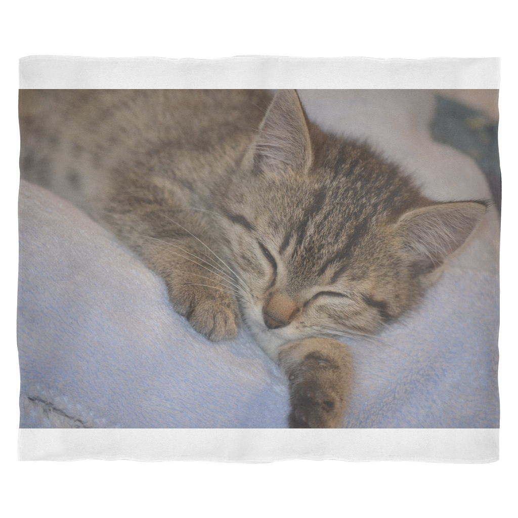 Sleeping Kitten Fleece Blanket