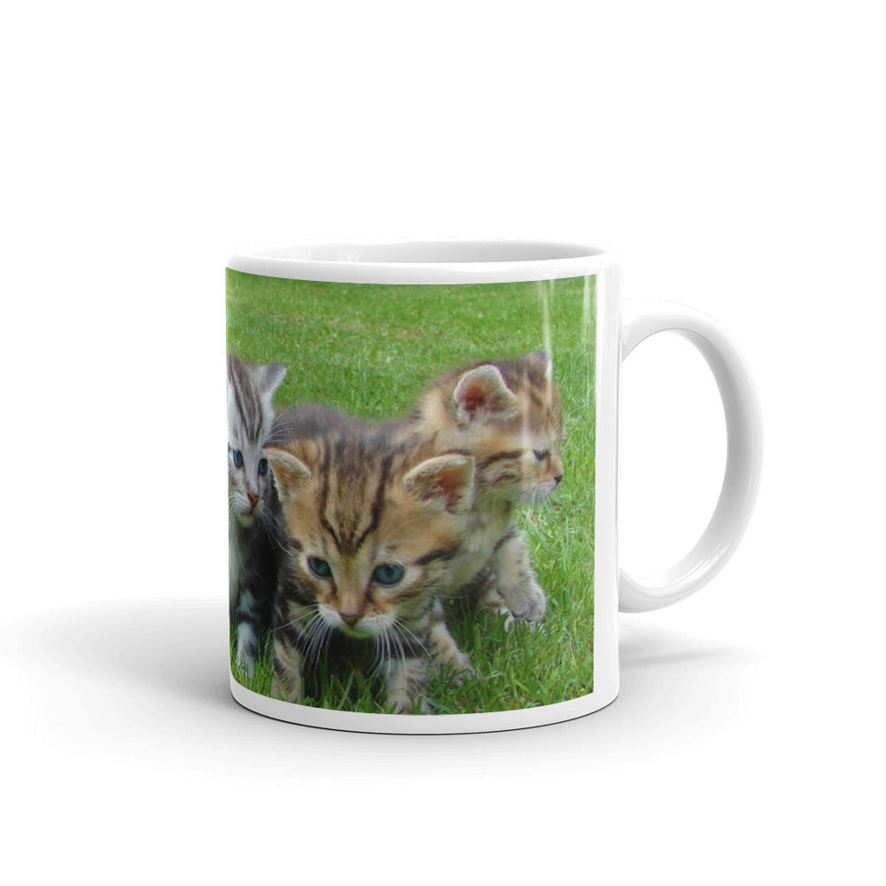 Group of Kittens Mug