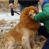 Lion Mane Costume for Dogs