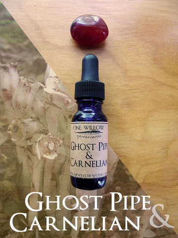 Ghost Pipe + Carnelian Earth Alchemy Elixir