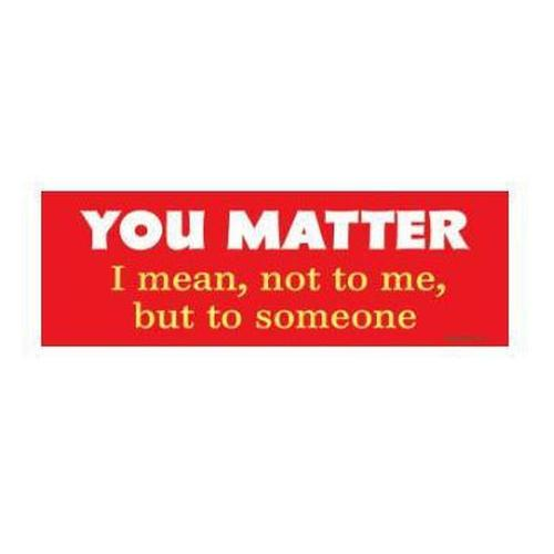 """You Matter. I Mean, Not To Me, But To Someone."" Bumper Magnet"