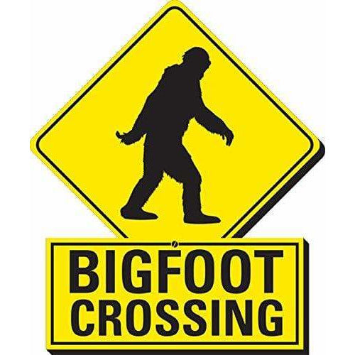 Bigfoot Crossing Funky Chunky Magnet - ANTHILL shopNplay