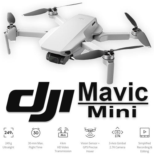 DJI Mavic Mini Fly More Combo | RC-N-Go