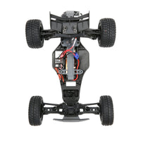 ECX 1/10 AMP DB 2WD Desert Buggy (Brushed / RTR) | RC-N-Go