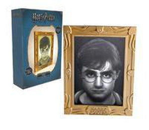 Harry Potter Holopane Mood Lamp