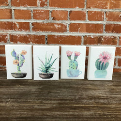 Wood Wall Decor with Painted Succulents-4 Assorted