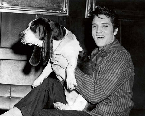 Elvis and his dog