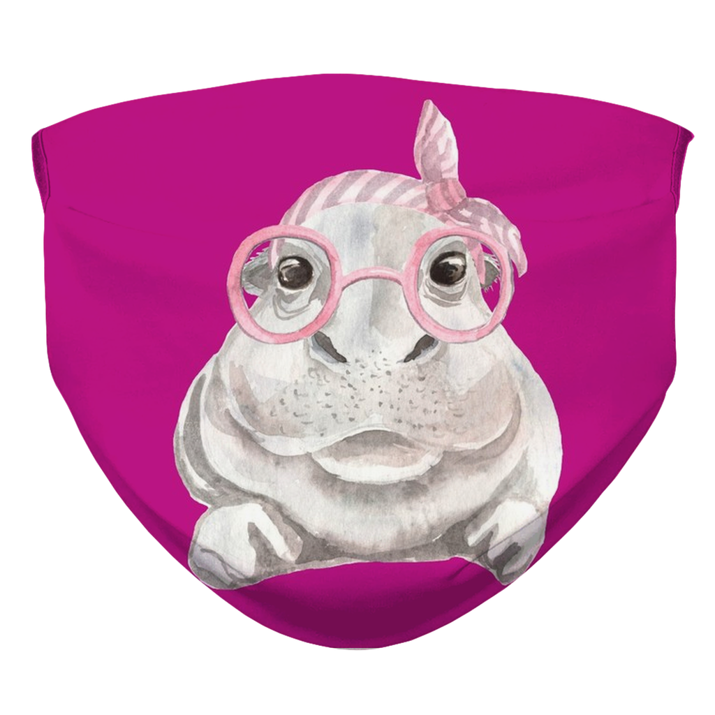 Hippo Face Mask With Filter