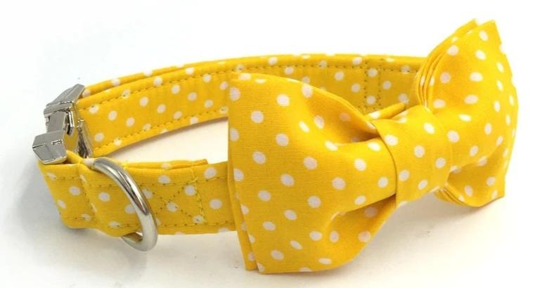Yellow Dog Collar with Bow Tie