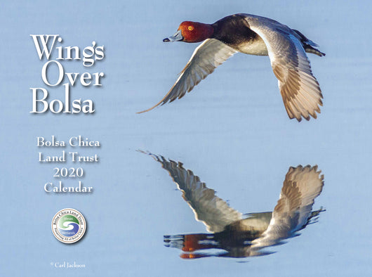 2020 Wings Over Bolsa Calendar