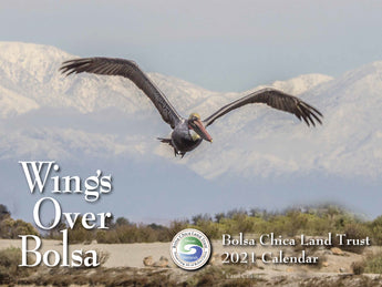 2021 Wings Over Bolsa Calendar