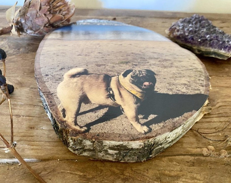 Pet Portrait - Personalised Wood Slice Silver Birch