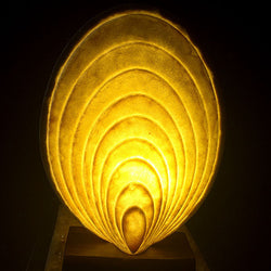 Ancient Sands Scallop Shell Table Light from Ocean Collection