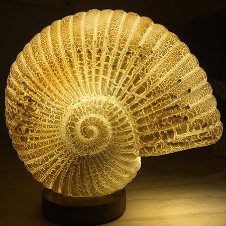 Crackled Lava Nautilus Shell Table Light from Ocean Collection