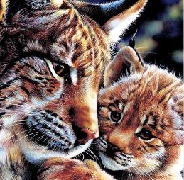 Diamond Art - TIGER & CUB