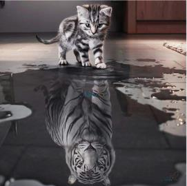 Diamond Art - CAT REFLECTION