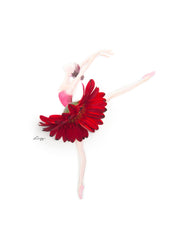 Digital Artprint-Gerbera Ballerina-Love Limzy Co.