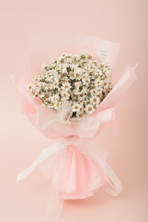 Preserved Dried Flower Bouquet-Charming Ixodia - Blush Pink-Love Limzy Co.
