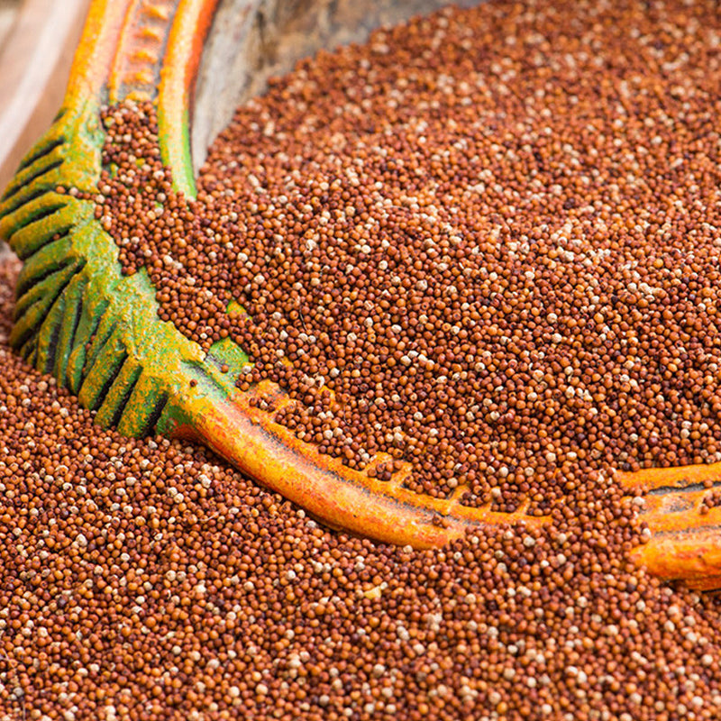 Finger Millet - Nutty Yogi
