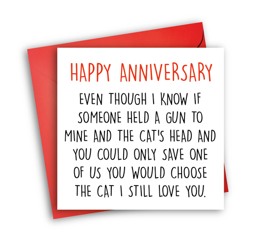 Prefer Cat (anniversary)