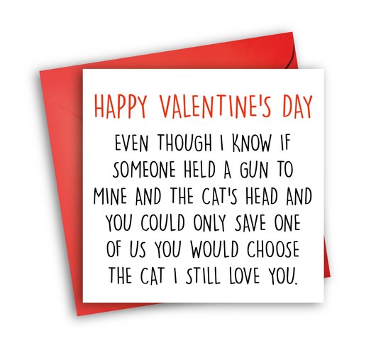 Prefer Cat (valentine)