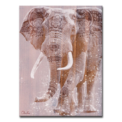 Ready2HangArt 'Wild Zen II' Inspirational Canvas Art by Olivia Rose - Hipimi