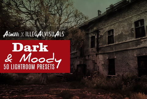 Lightroom Presets: Dark & Moody (50 presets)
