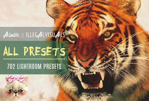 SUPER SALE! ALL PRESETS BUNDLE (702 presets)