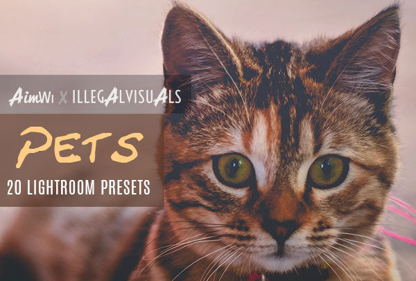 Lightroom Presets: Pets (20 presets)