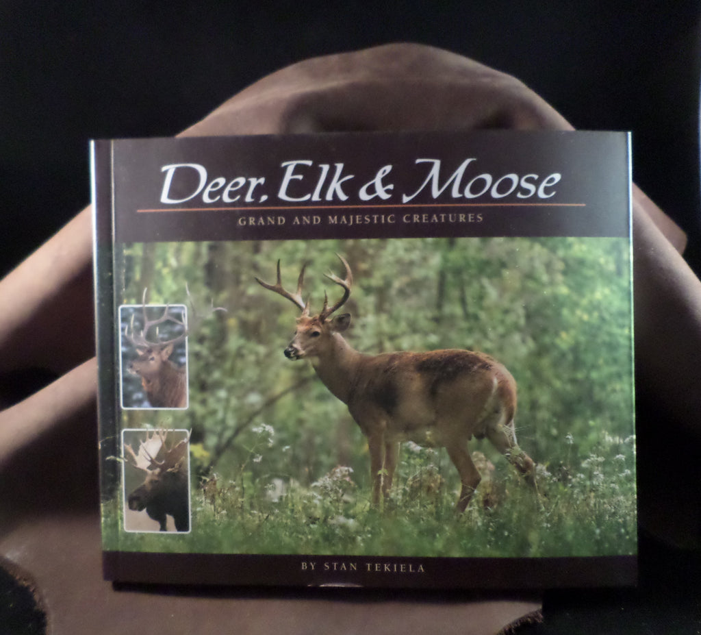 Deer, Elk & Moose