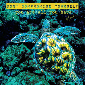 Love - Compromise | The Honu Collection by Amy Wakingwolf
