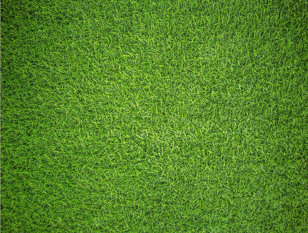 Natural Grass - Impuzzible