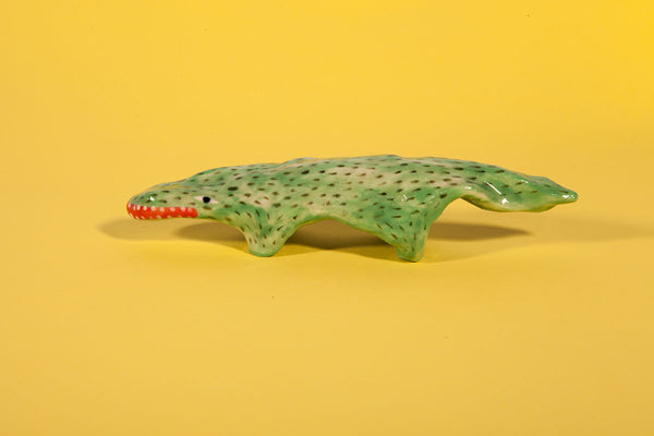 Tiny creature - Ali the alligator
