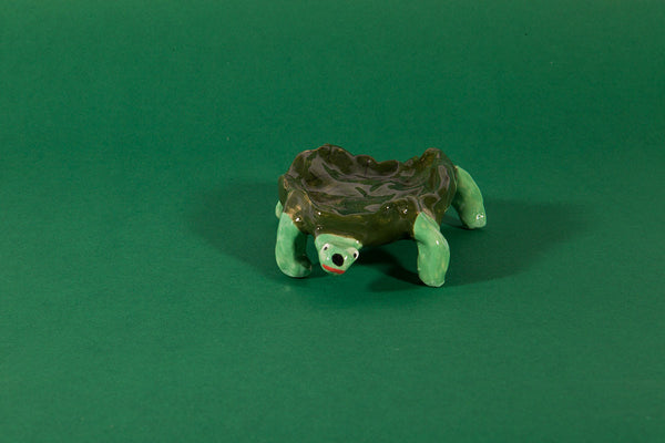 Tiny creature - The turtle