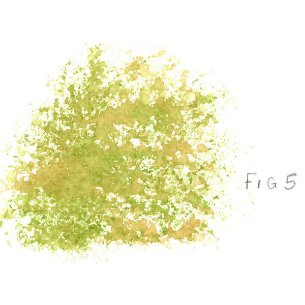 fig-5