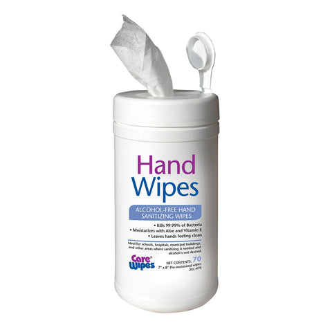 Alcohol Free Hand Sanitizing Wipes (4 pkgs of 70 wipes = 280 wipes)