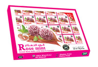 101 BANARASI ROSE MINT 30PCS - Mabrook