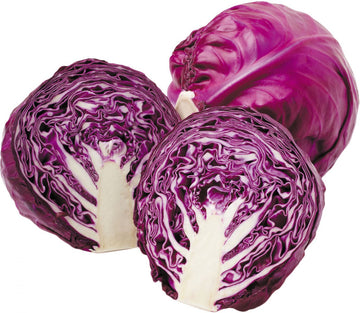 CABBAGE PURPLE